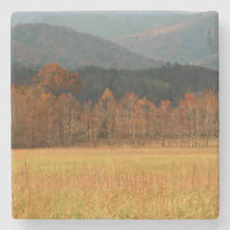 USA, Tennessee. Cades Cove In Smoky Mountain Stone Coaster
