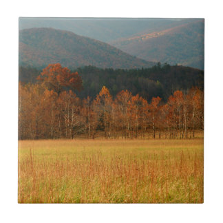 USA, Tennessee. Cades Cove In Smoky Mountain Tile