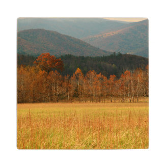 USA, Tennessee. Cades Cove In Smoky Mountain Wood Coaster