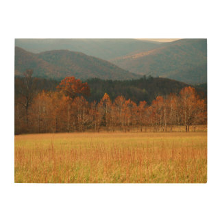 USA, Tennessee. Cades Cove In Smoky Mountain Wood Print