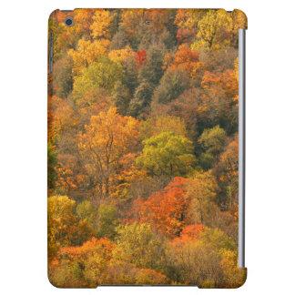 USA, Tennessee. Fall Foliage 2