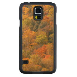 USA, Tennessee. Fall Foliage 2 Carved Maple Galaxy S5 Case