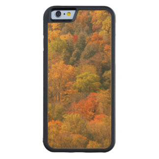 USA, Tennessee. Fall Foliage 2 Carved Maple iPhone 6 Bumper Case