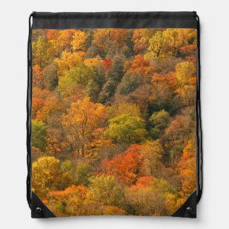 USA, Tennessee. Fall Foliage 2 Drawstring Bag