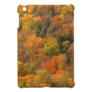 USA, Tennessee. Fall Foliage 2 iPad Mini Covers