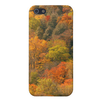 USA, Tennessee. Fall Foliage 2 iPhone 5 Case