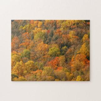 USA, Tennessee. Fall Foliage 2 Jigsaw Puzzle