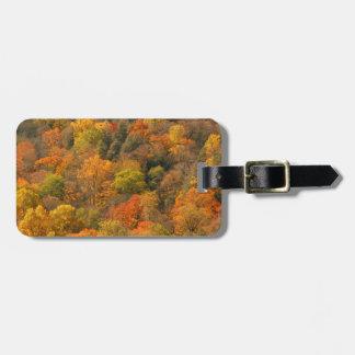USA, Tennessee. Fall Foliage 2 Luggage Tag