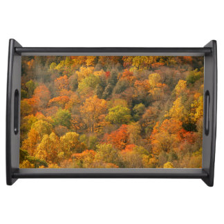 USA, Tennessee. Fall Foliage 2 Serving Tray