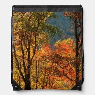 USA, Tennessee. Fall Foliage Drawstring Bag