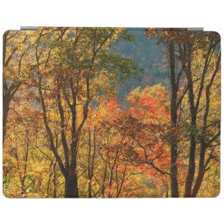 USA, Tennessee. Fall Foliage iPad Cover