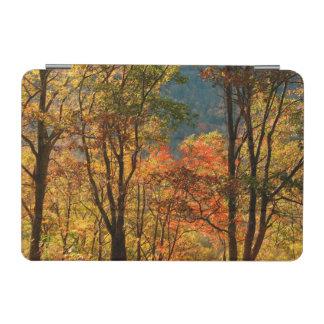USA, Tennessee. Fall Foliage iPad Mini Cover