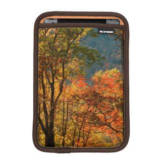 USA, Tennessee. Fall Foliage iPad Mini Sleeve