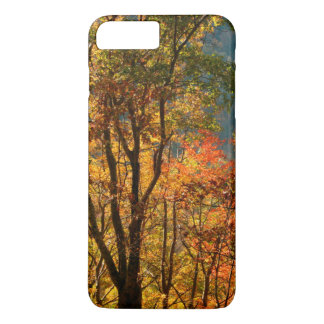 USA, Tennessee. Fall Foliage iPhone 8 Plus/7 Plus Case
