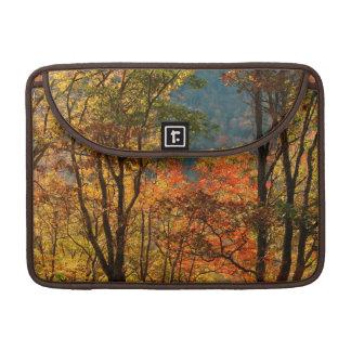 USA, Tennessee. Fall Foliage Sleeve For MacBooks