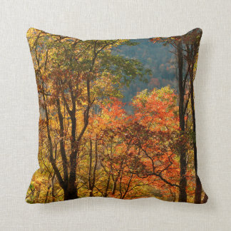 USA, Tennessee. Fall Foliage Throw Pillow