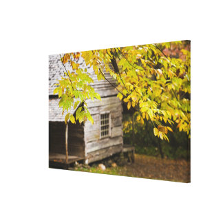USA, Tennessee, Gatlinburg. Great Smoky Stretched Canvas Print