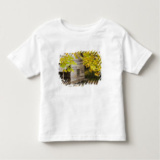 USA, Tennessee, Gatlinburg. Great Smoky Toddler T-Shirt