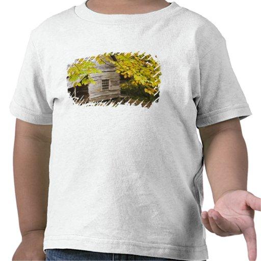 USA, Tennessee, Gatlinburg. Great Smoky T Shirts