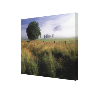 USA, Tennessee, Great Smokey Mountains Canvas Print