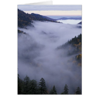 USA, Tennessee. Great Smokey Mountains National Card