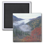 USA, Tennessee, Great Smokey Mountains National Magnet