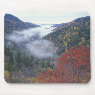 USA, Tennessee, Great Smokey Mountains National Mouse Mat