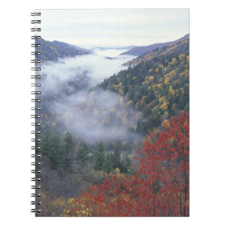 USA, Tennessee, Great Smokey Mountains National Notebook