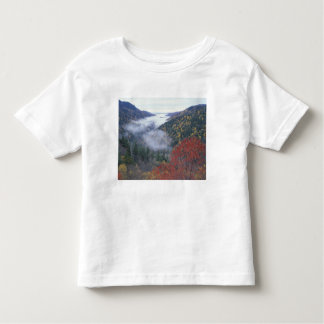 USA, Tennessee, Great Smokey Mountains National Toddler T-Shirt