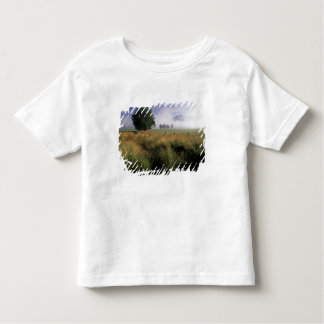 USA, Tennessee, Great Smokey Mountains Toddler T-Shirt