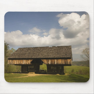 USA, Tennessee, Great Smoky Mountain NP. Mouse Pad