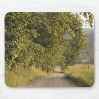 USA, Tennessee, Great Smoky Mountains National 2 Mouse Mat
