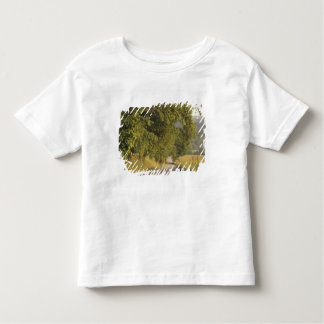 USA, Tennessee, Great Smoky Mountains National 2 Toddler T-Shirt