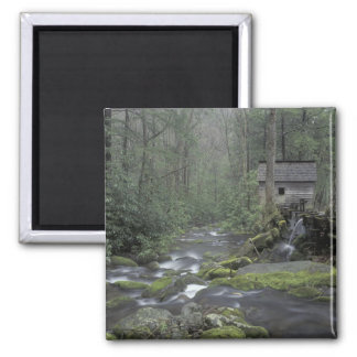 USA, Tennessee, Great Smoky Mountains National 3 Magnet