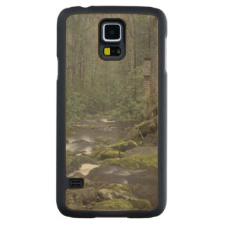 USA, Tennessee, Great Smoky Mountains National 3 Maple Galaxy S5 Case