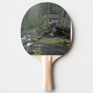 USA, Tennessee, Great Smoky Mountains National 3 Ping Pong Paddle