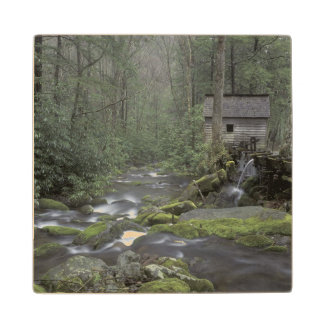 USA, Tennessee, Great Smoky Mountains National 3 Wood Coaster