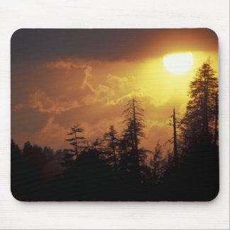 USA, Tennessee, Great Smoky Mountains NP. 2 Mouse Mat