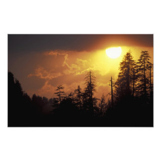 USA, Tennessee, Great Smoky Mountains NP. 2 Photo Print