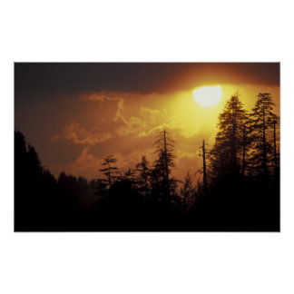 USA, Tennessee, Great Smoky Mountains NP. 2 Poster