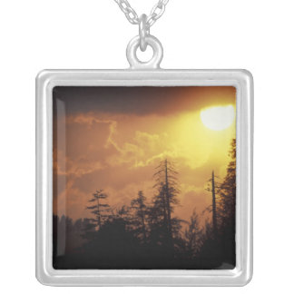 USA, Tennessee, Great Smoky Mountains NP. 2 Silver Plated Necklace