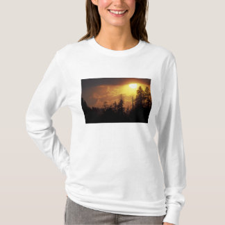 USA, Tennessee, Great Smoky Mountains NP. 2 T-Shirt