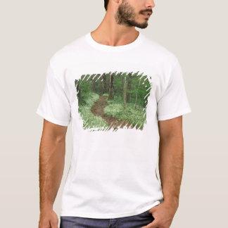 USA, Tennessee, Great Smoky Mountains NP, 3 T-Shirt