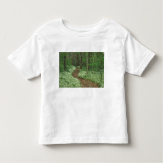 USA, Tennessee, Great Smoky Mountains NP, 3 Toddler T-Shirt