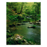 USA, Tennessee, Great Smoky Mountains Poster