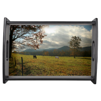 USA, Tennessee. Horses In Cades Cove Valley Serving Tray