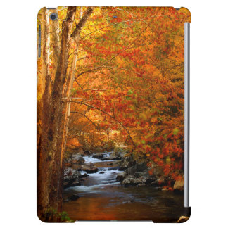 USA, Tennessee. Rushing Mountain Creek 2