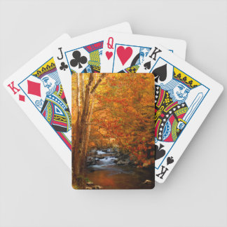 USA, Tennessee. Rushing Mountain Creek 2 Bicycle Playing Cards