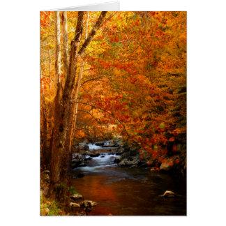 USA, Tennessee. Rushing Mountain Creek 2 Card
