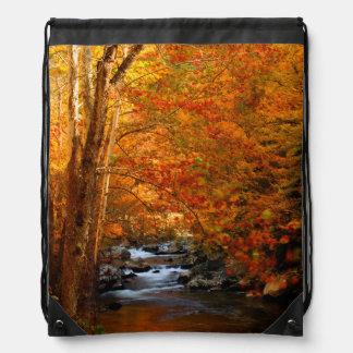 USA, Tennessee. Rushing Mountain Creek 2 Drawstring Bag